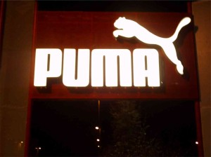 Puma Profil 5