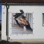 banner frontlit